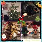 Christmas 2014 *̣̥☆·͙̥‧❄‧̩̥·‧•̥̩̥͙‧·‧̩̥˟͙☃˟͙‧̩̥·‧•̥̩̥͙‧·‧̩̥❄‧·͙̥̣☆*̣̥