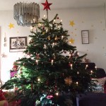 Merry Christmas 2015! 🎄🎁🎅🏼